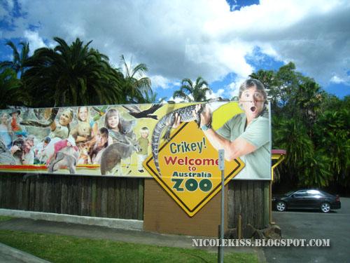 crikey signboard