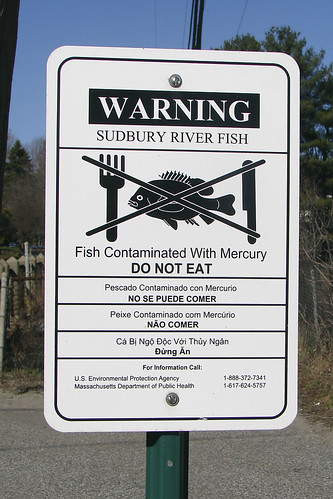 warning mercury copy