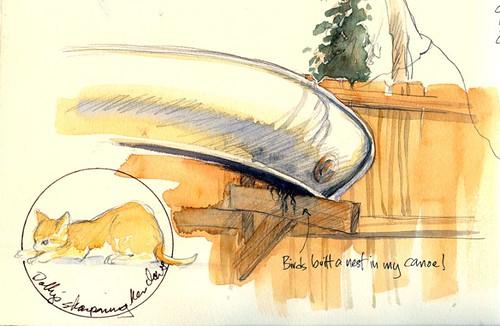 birdhouse canoe