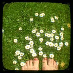 No.191 (_cassia_) Tags: flowers red white green feet grass sunshine yellow daisies vintage spring toes 21st tuesday april barefeet dust dandelions nailvarnish ttv throughtheviewfinder 365daysincolour