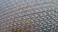 Epcot (With Flowers) (Mr Noded) Tags: epcot sphere waltdisneyworld spaceshipearth leicadlux4 dlux4