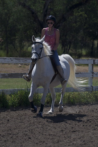 Only 13-1/2 years old, Kimberly has her sights on a spot on the Olympic Equestrian Team. Look for her in London!