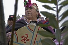 Celebración año nuevo mapuche Municipalidad de peñalolén