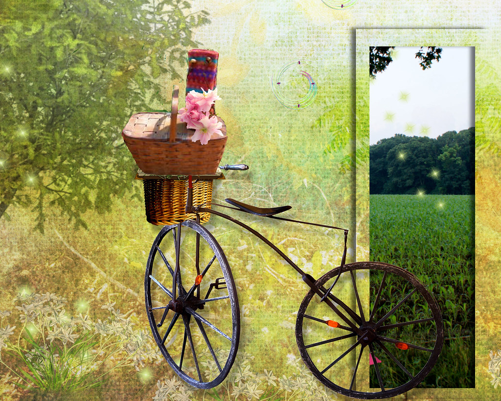 pink-saturday-picnic-bicycle