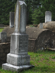 Waverly Graveyard