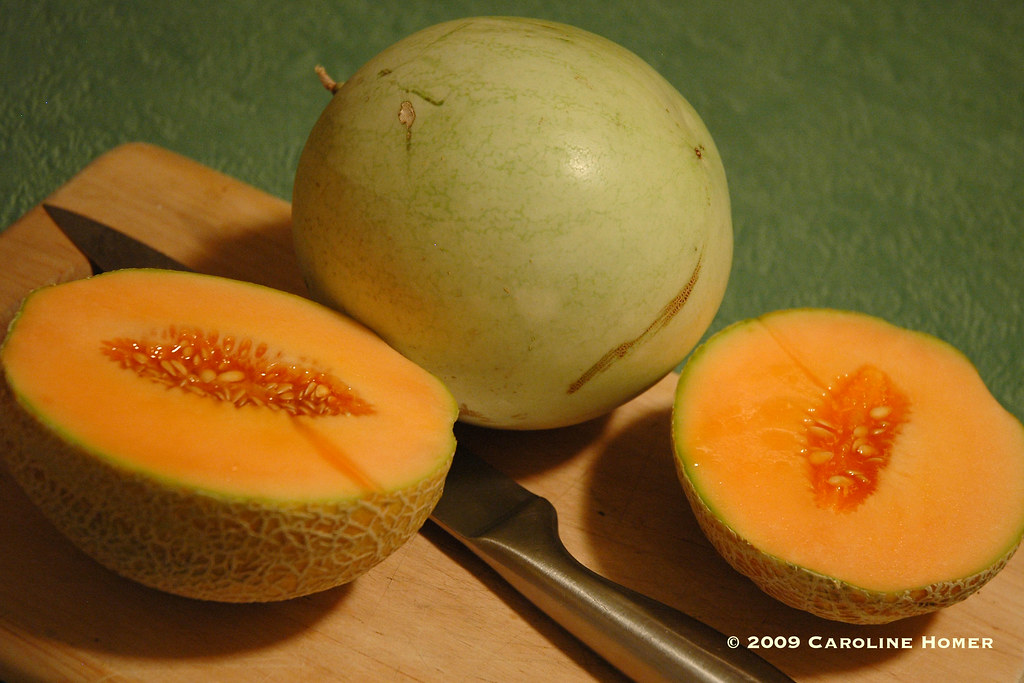 3619melons