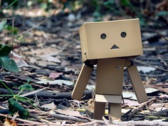 Walking out of the Shadows (willycoolpics.) Tags: nature walking toy action figure p wilderness picnik danbo revoltech danboard imnotgoodwithtitlesordescriptions butilikthisshot