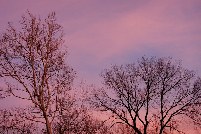 Winter Dusk, 2 of 2