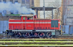 Bulgaria State Railways (BDZ) diesel-hydraulic shunting locomotive 52 119 at speed, Nova Zagora, Bulgaria, February 21, 2007. Built in the DDR (East Germany) by VEB LEW Hennigsdorf in 1965. (Ivan S. Abrams) Tags: railroad train bobo railway trains ddr railways railfan locomotives railroads spanishcivilwar eastgermany deutschereichsbahn railfans thomasfischer railwayenthusiast 0220 class52 bdz dieselhydrauliclocomotives 0440 dieselhydrauliclocomotive railwayenthusiasts hansbeimler plovdivbulgaria bulgariastaterailways ivansabrams novazagorabulgaria shuntinglocomotives kostadinmihailov railbuff railwaytouringcompany shuntinglocomotive starazagorabulgaria railbuffs slivenbulgaria classv60 veblokomotivundelectrotechnischewerkehansbeimlerhennigsdorf eastgermancommunistparty plevenbulgaria aseenstoyanov dutchrailwayclub veblewhennigsdorf spartacusinternational abramsandmcdanielinternationallawandeconomicdiplomacy ivansabramsarizonaattorney ivansabramsbauniversityofpittsburghjduniversityofpittsburghllmuniversityofarizonainternationallawyer
