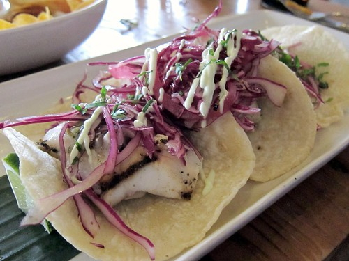 Rockfish Tacos, Little Water Cantina