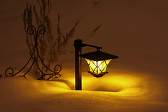 Winter garden (KarenR-TB) Tags: winter snow night garden solarlight anawesomeshot coppercloudsilvernsun