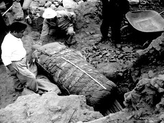 Excavation of mummies