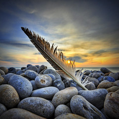 Icarus Redux (petervanallen) Tags: camera uk blue sunset sea sky orange beach portland landscape coast nikon raw map shoreline feather pebbles adobe shore dorset tone hdr jurassic chesilbeach chesil sigma1020mm adobecameraraw jurassiccoast d90 tonemapping 3exp petervanallencom