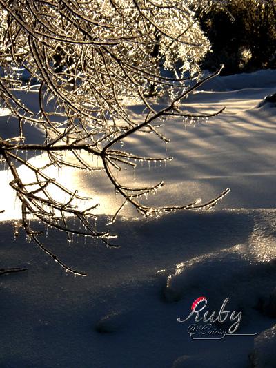 Freezing_rain_15