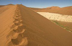 "Fred's Footsteps, Namibia, on the right: The ""Dead Valley"" (Marie-Marthe Gagnon) Tags: landscape sand alone dunes deathvalley serene scape sesriem namibia sanddunes sossusvlei namib deadvlei hiddenvlei flickrchallengegroup flickrchallengewinner geoafrica mariegagnon mariemarthegagnon"