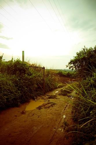 Jalan Rural
