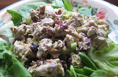 chicken salad with pecans and craisins