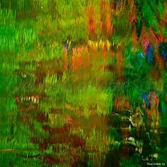 Life imitates art far more than Art imitates Life...!!! Oscar Wilde (Denis Collette...!!!) Tags: trees wild canada reflection tree art reflections river photo quebec photos rivire safari reflet arbres qubec rivers walden impressions oriental collette orient arbre reflets photosafari impression impressionist denis sauvages thoreau sauvage impressionists rivires portneuf wildrivers wildriver impressionistes impressionniste deniscollette pontrouge orientaux riviresauvage world100f goldenart reflectyourworld riviressauvages photossafari cffaa sensationalphoto themonalisasmile