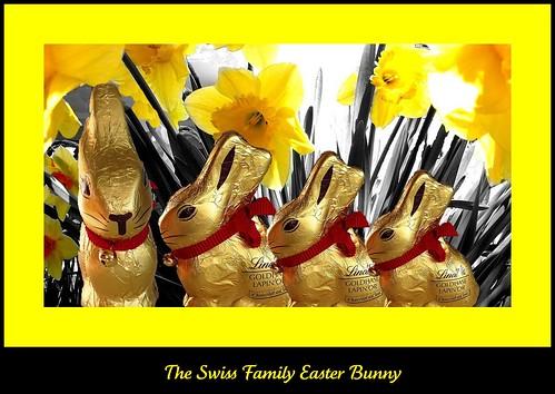 Swiss family bunny