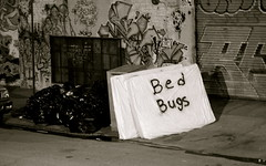 Bed bugs (Micl G.Riva) Tags: nyc bw window brooklyn stuff matress bedbugs mckibbin materasso pulci pattumiera amnsa