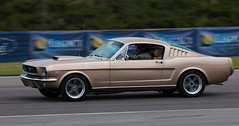 GOld66 fastback (lclutchl) Tags: auto road park desktop old wallpaper usa motion blur classic cars ford sports car club race america canon fun corporate gold moving birmingham automobile track cross action muscle antique mark anniversary background alabama performance fast automotive racing 66 course celebration company event ii american barber 5d clutch motor aniversary autocross mustang anniversery panning amateur motorsports coupe fords highspeed mustangs mca 45th scca fastback anniversay anniverary edwardfrank edfrank 45thanniversary highperformancedriving lclutchl clutchphotography