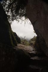 Path to the Inca Bridge, Machu Picchu