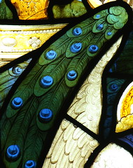 Kempe peacock feathers (davewebster14) Tags: gabriel church glass angel yorkshire peacock stainedglass stained peacockfeathers alne kempe cekempe charleseamerkempe stmaryalne