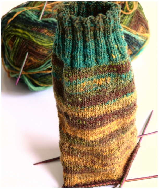 noro sock.jpg