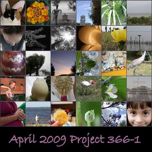 April 2009 Project 3661-1