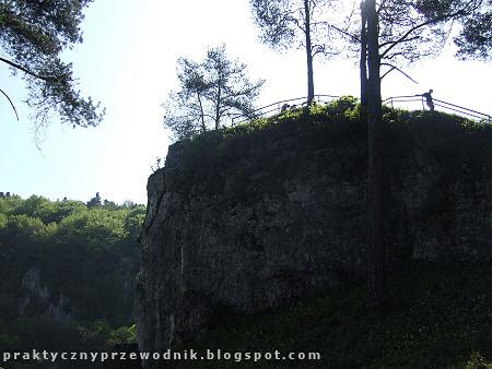 Ojcowski Park Narodowy - zdjęcie 10