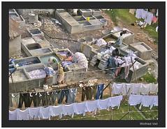 public laundry IV (Winfried Veil) Tags: india veil clean wash laundry sewage pollution indien winfried gujarat ahmedabad reinigung kleidung waschen hemden abwasser wastewater reinigen publiclaundry environmentalpollution umweltverschmutzung schmutzwasser mobilew drainwater winfriedveil wascherei