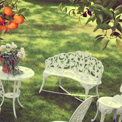Party's Over. (Amanda) Tags: old tree green fruit vintage garden spring shade tables hanging oranges absent ivekindofbeengoingthroughafruitphotographyphaserecently imexcitedforcincodemayotomorrowwww