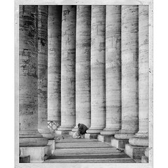 as low as it gets () Tags: street city italy vatican stpeters rome roma andy strada italia andrea homeless poor columns andrew beggar marble pillars desperation sanpietro 50mmf14 colonne marmo mendicante benedetti senzatetto povero disperazione pilastri nikond90