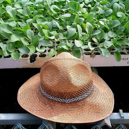farmer's hat