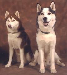 Injun & Kumi