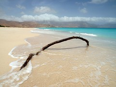 Isolated ~ Socotra Island, Yemen (Martin Sojka .. www.VisualEscap.es) Tags: blue sea seascape beach nature colors clouds landscape sand branch vivid olympus yemen zuiko e30 1260 zd socotra 1260mm