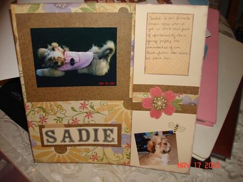 sadie layout 5-17-09 (2)