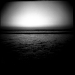~ The Root of the Wine-Dark Sea (Mackeson) Tags: film holga pabloneruda buscar mackeson