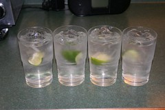 G and T's