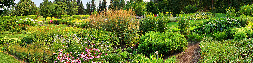 Joel E. Ferris Perennial Garden Panorama