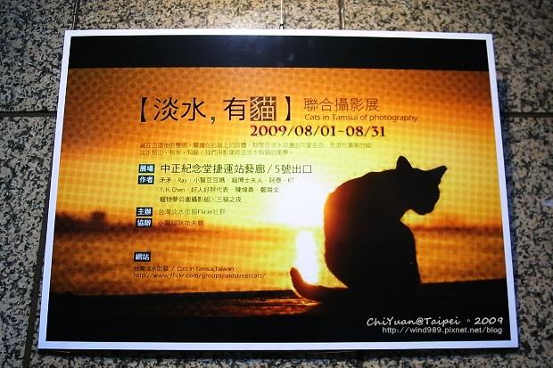 淡水,有貓。聯合攝影展01.jpg