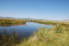 Owens River Restoration (ExperienceLA) Tags: california summer vacation outdoors nikon mammoth restoration sierras habitat owensriver d80 owensriverrestoration