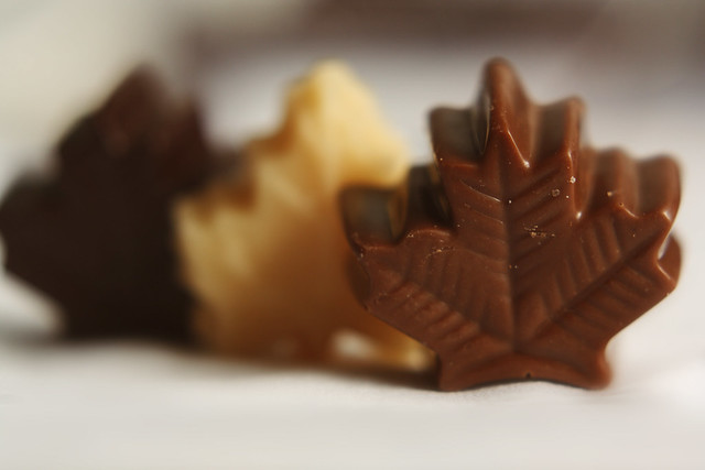 Day 285 - Maple Leaf Chocolate
