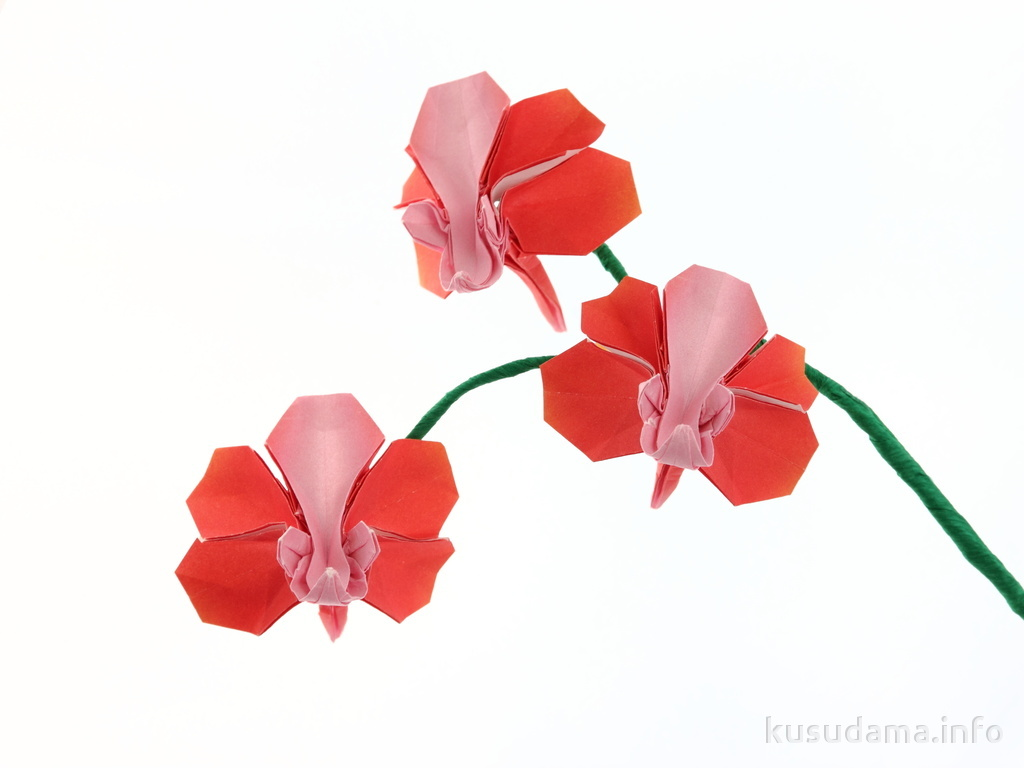 Robert lang origami instructions origami butterfly robert j lang 3 - The World S Most Recently Posted Photos Of Orchid And