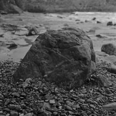 Rock with Shingle (sfb_dot_com) Tags: england film cornwall 930 fujineopan400 staustell id1111 mamiyac330s sekor80mm