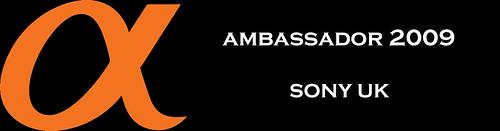 Sony ambassador 2009