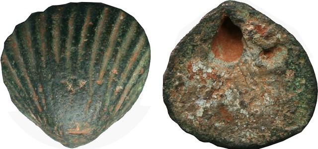 000-05-0647-43-Aes Signatum scallop shell