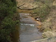 14 - walnut creek 2