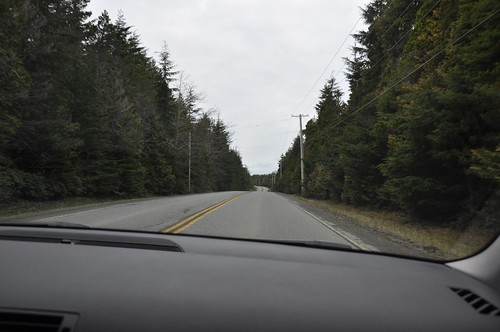 Road to Tofino - what ocean?!