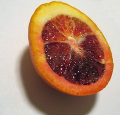 Moroccan Blood Orange (zJMac) Tags: world light shadow red orange white ontario canada nature standing canon blood shiny sitting shadows view ottawa watching lonely placement moroccan plu 4381 zjmac